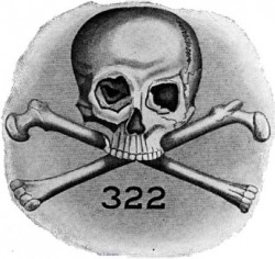 Bones_logo-250x236