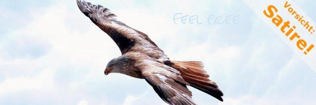 feel_free_flug_eines_adlers_vs_p